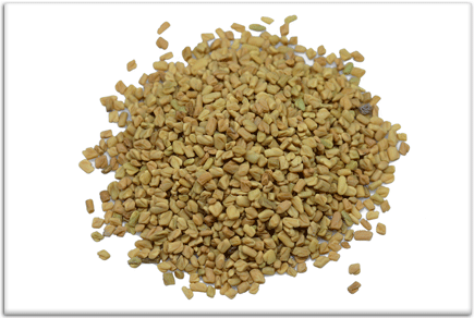 TestRX Booster Fanugreek